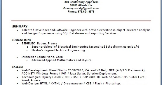 business intelligence web developer resume format in word