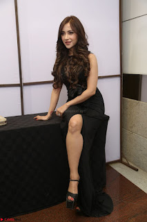 Angela Krislinzki in Transparent Black Gown at Rogue Movie Teaser Launch 1st March 2017 077.JPG