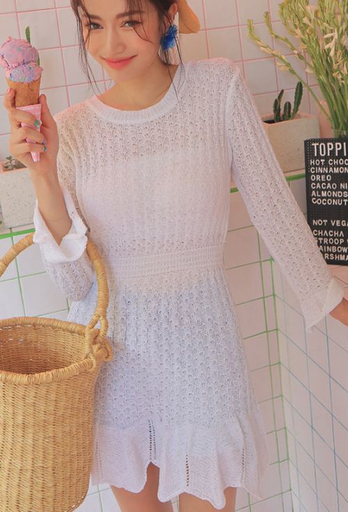 Eyelet Detail Sheer Mini Dress