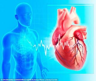 7 Tips Sederhana untuk Mencegah Penyakit Jantung Pemuda Khusus