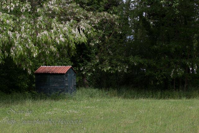 cabane isolée avant