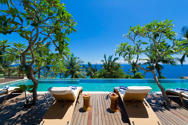 Picture of the ocean view through exotic vegetation from the pool area terrace