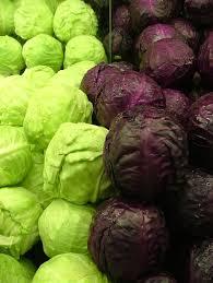 cabbage(band gobhi) health benefits in urdu