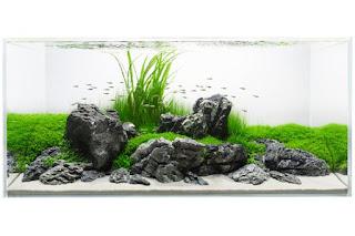 https://www.faktapopuler.com/2018/12/200-referensi-desain-dan-model.html
