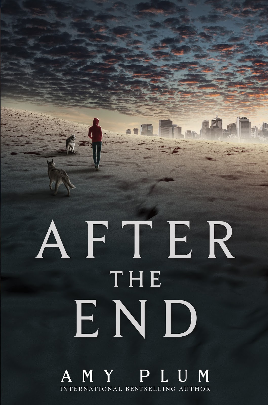 After The End Amy Plum cover