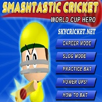 Play Smashtastic Cricket game