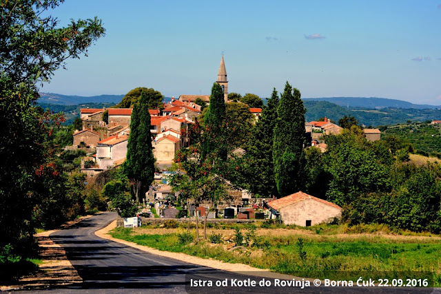 Draguć u Istri