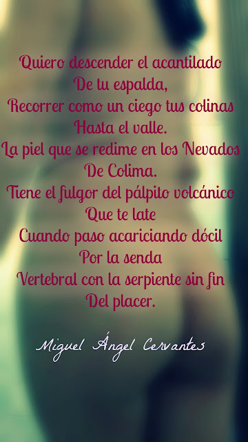 blogdepoesia-poesia-miguel-angel-cervantes-placer