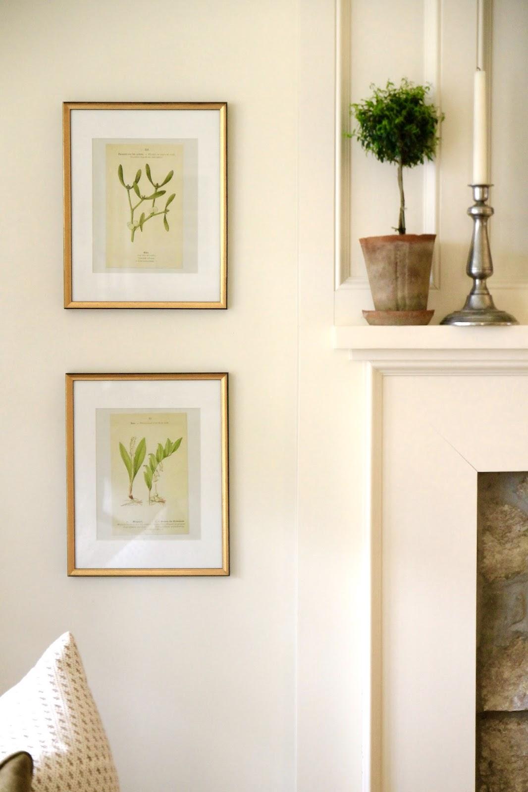 Gold Leaf Frames Mat Boards Botanical Prints Gallery Wall Favorites