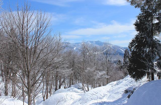 冬の戸隠神社は雪に埋もれている??話題のパワースポット神社に行ってみた【t】