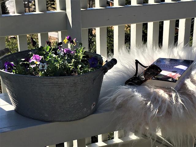 Vårblomster i krukker har ankommet hytta - Nærbilde av stilleben på benk på hytta - mot utsikten