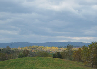 Sunlit yellow leaves on a distant hillside under a gray sky in Virginia