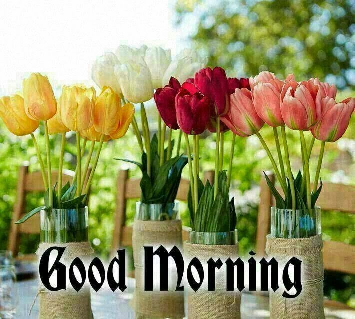 Wonderful Quotes Usi Comg Flowers: Sweet Romantic Good Morning Cards Download