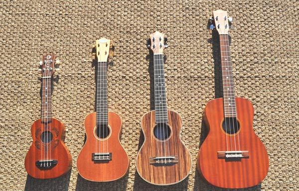 4 loại đàn Ukulele: Soprano, Concert, Alto-Tenor, Baritone
