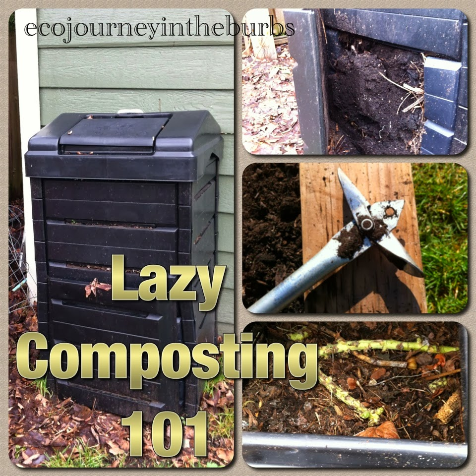 Eco Journey In The Burbs Diy Celery: Eco Journey In The Burbs: Lazy Composting 101