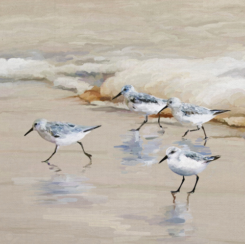 Sandpiper Beach Art Print