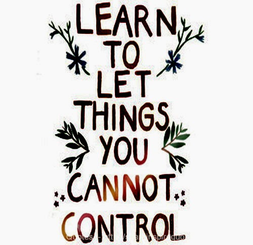 Inspirational Life Quotes And Sayings You Can T Control: Learn To Let Things You Cannot Control GO.