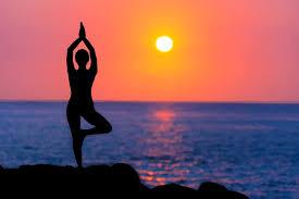 Essay on International Yoga day - 500 words