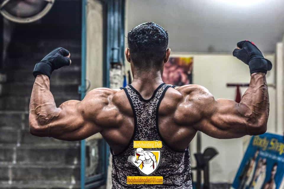 Bodybuilding Back