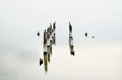 Old remains on the lake
