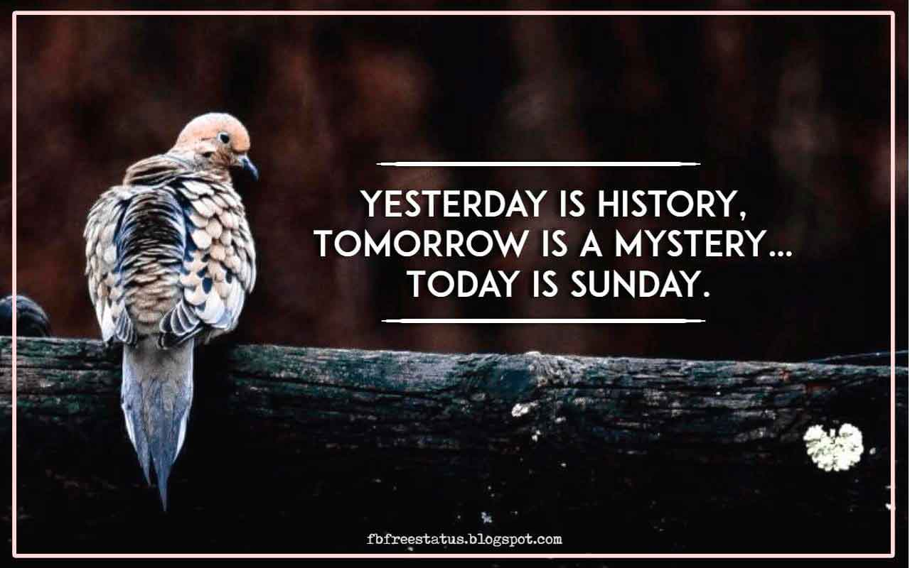 Yesterday is history, Tomorrow is a mystery� Today is sunday.