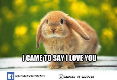 I came to say i love you