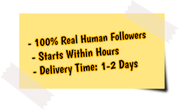 get more linkedin followers service features
