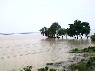 Photo of Flood in Bihar