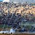 SESIONARÁ DE EMERGENCIA CONSEJO DE SEGURIDAD DE LA ONU POR HECHOS OCURRIDOS EN GAZA