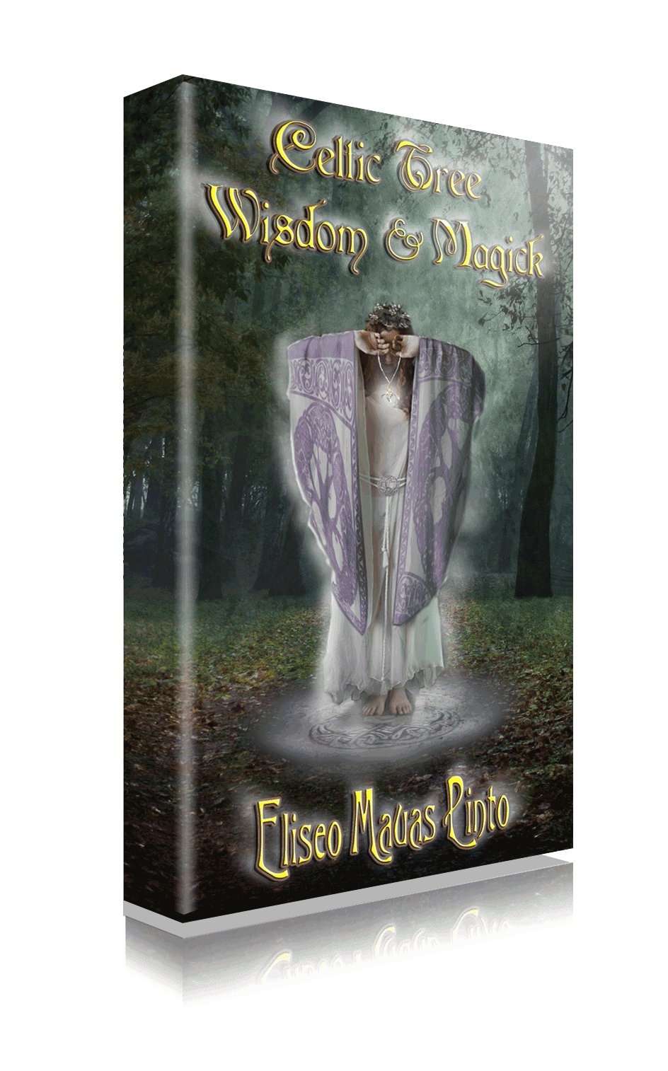 http://www.amazon.com/Celtic-Wisdom-Magick-Eliseo-Mauas-ebook/dp/B00HG7GFDQ/ref=tmm_kin_swatch_0?_encoding=UTF8&sr=&qid=