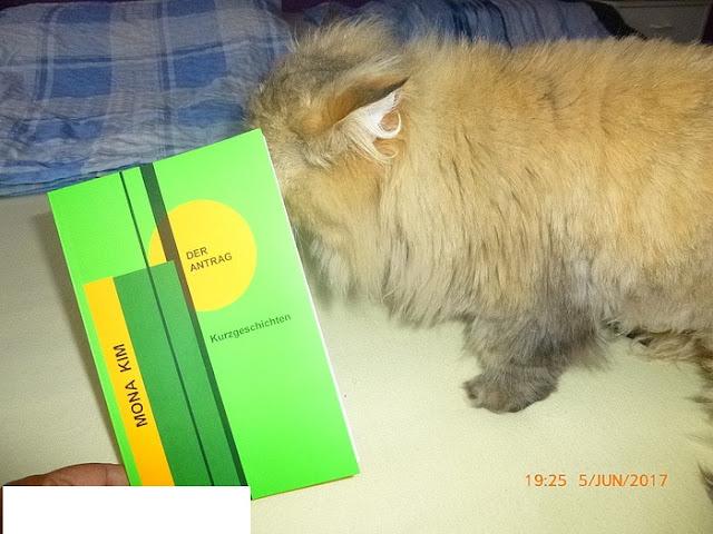 """das Buch """"Der Antrag - Kurzgeschichten"""" von Mona Kim"""