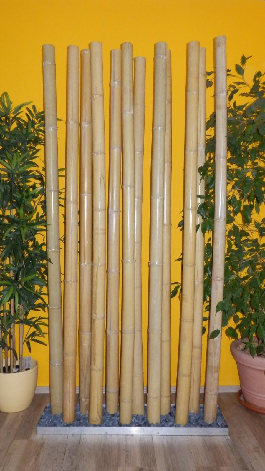 Paraboo Wir Bringen Bambus Zum Leuchten Bambusraumteiler Jungle