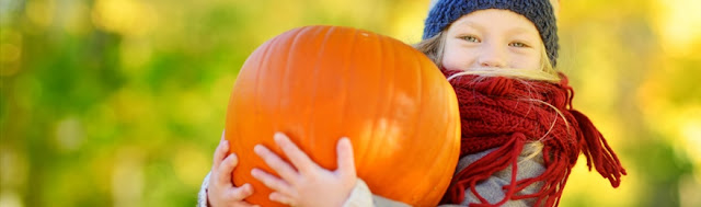 7 Fab Family-Friendly Autumn Activities in the Land of Oak & Iron