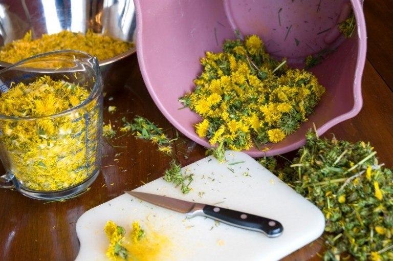 best-uses-for-dandelions