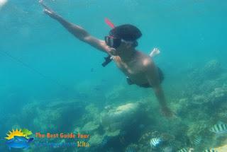 menikmati bawah air karimunjawa