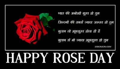 Valentine Day February 2016 7th Feb Happy Rose Day Quotes Msgs
