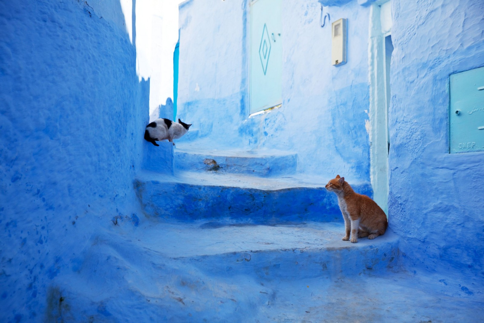 Cut Gloves For Kitchen Backsplash Wallpaper Chefchaouen The Blue City ~ Morocco Travel