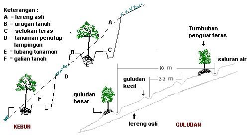 Proses Rekonstruksi Tanah Bekas tambang