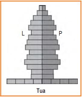 Piramida penduduk tua (Konstruktif)