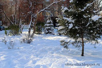 Зима в Тюмени