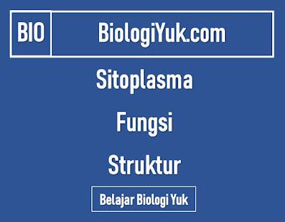 Sitoplasma: Fungsi, Struktur, Gambar Lengkap