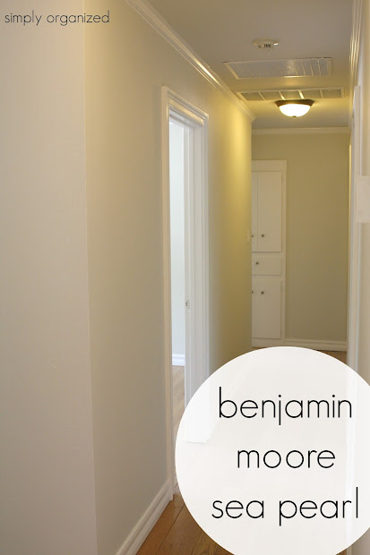 Sea Pearl Benjamin Moore Paint Color