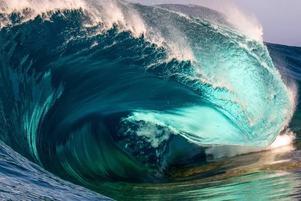 Nikon surf Fotografíay awards 13
