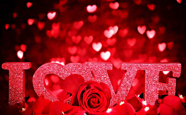 happy valentine's day 2017 hd wallpaper free download 4