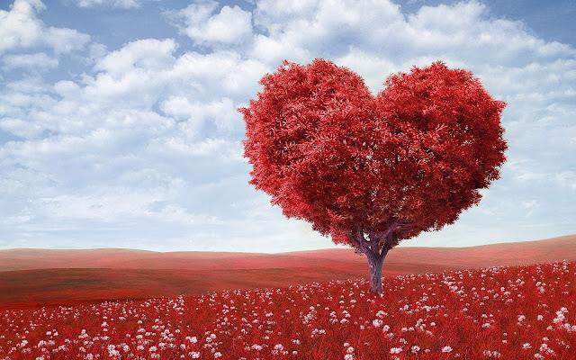 Kumpulan Kata Kata Bijak Mutiara Cinta Terbaru