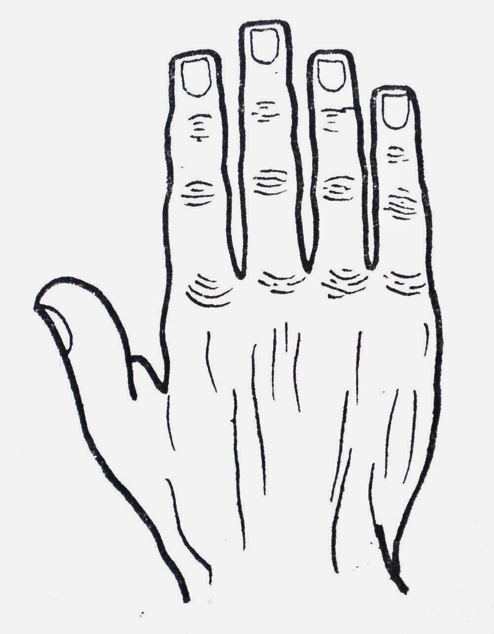 Hand Prediction ทำนายลายมือ: มือสี่เหลี่ยมจตุรัสหรือมือ