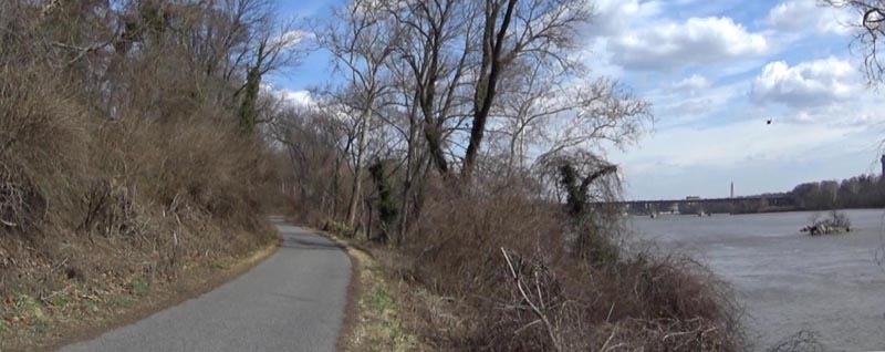 Bicycle trail beside trees and the Potomac River in Washington, DC