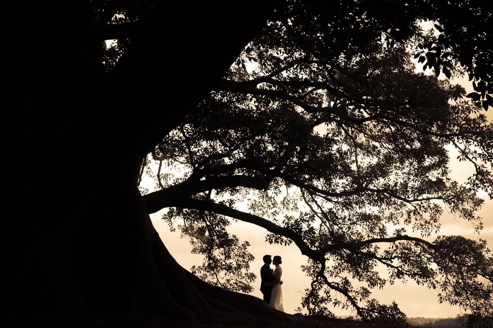 Wedding photographers in Sydney, Australia - Moving Cloud Studio