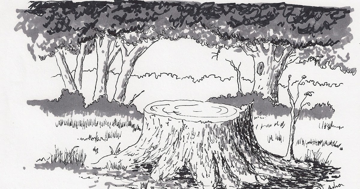 Adron's Art Lesson Plans: Drawing a Picture of a Tree ...