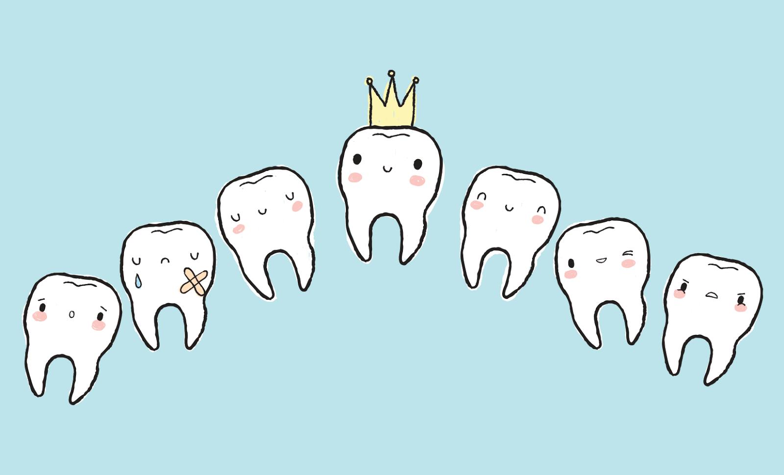 Tooth Fairy World Dental